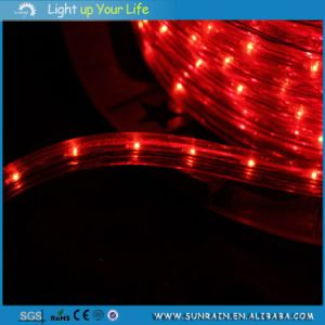 High Quality Rope Light 2 Wires pictures & photos