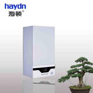 Home Use Wall Hung Gas Boiler