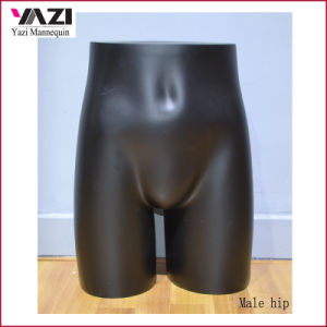 Fiberglass Male Half Mannequin Hip for Underwear Display pictures & photos