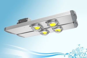 Government Lighting Project 80W/120W LED Street Lights with Meanwell Driver/ Road Lamp