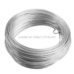 05mm-4.2mm Elcetro Galvanized Iron Wire by Puersen pictures & photos