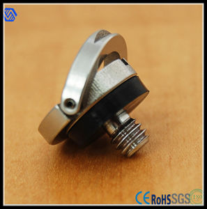 Wholesale Stainless Steel Camera Screw pictures & photos