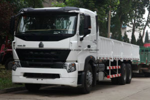 Hot Sale HOWO Cargo Truck Lorry Truck of Sinotruk pictures & photos