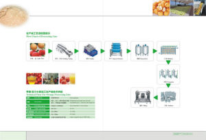 Complete Pear Fruit Processing Line Turnkey Project pictures & photos