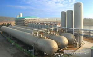 PSA-Pure CO2 Technology pictures & photos