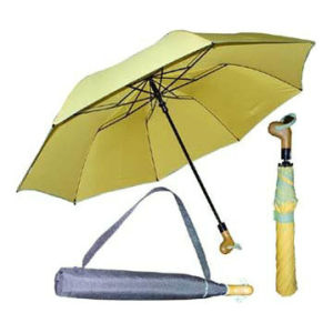 2 Section Golf Umbrella (BR-FU-34) pictures & photos