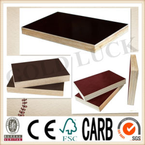 Qingdao Gold Luck Film Faced Scaffold Plywood pictures & photos