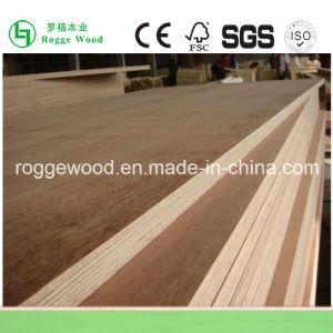 Bintangor Plywood/ Okoume Plywood Manufacturer