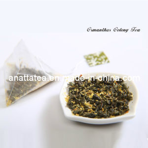 Good Quailty Oolong Tea with Osmanthus Flower Tea Bags