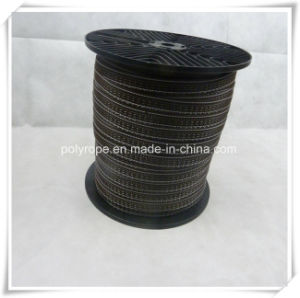 Electric Fence Polytape with Good Quality and High Conductivity pictures & photos