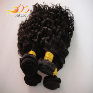 Malaysian Hair Extension 6A Jerry Curl Virgin Human Hair Weave pictures & photos