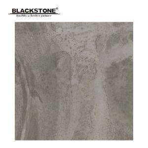 600X600 Porcelain Inkjet Rustic Floor Tiles with Dark Grey (664101NAC3) pictures & photos