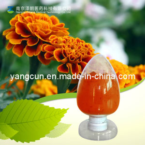 Natural Marigold Extract Lutein 75% pictures & photos