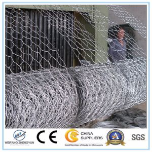 Wholesale! ! ! Hot Dipped Galvanized Gabion Box/ Hexagonal Gabion pictures & photos