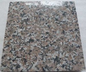Granite Slab & Tile (G341, G3767, G3783, G3786)