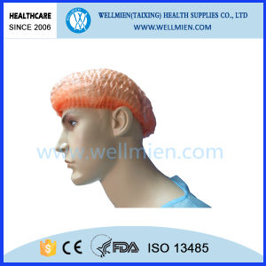 Disposable Non-Woven Bouffant Cap (WM) pictures & photos