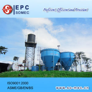 Palm Plantation Captive Power Plant Water Treatment System pictures & photos