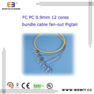FC PC 0.9mm 12 Cores Bundle Cable Fan-out Pigtail pictures & photos