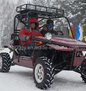 1100CC 4x4 Go Cart (LANDMAX 1100TR) pictures & photos