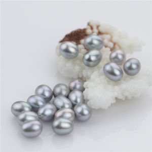 Snh Drop Shape Grey Color Natural Freshwater Loose Pearls pictures & photos