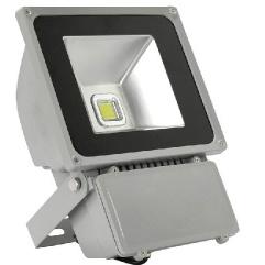 100W IP65 CE 3 Years Warranty LED Floodlight