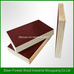 Film Faced Plywood Used in Construction Formwork pictures & photos
