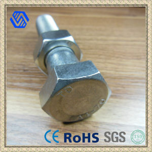 Wholesale Steel Hex Head Bolts (BL-0155) pictures & photos