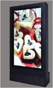 55inch IP65 1080P LCD Kiosk pictures & photos