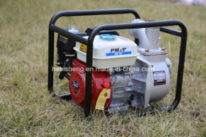 Pm&T Water Pump Wp80 3 Inch pictures & photos