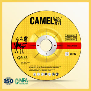 125X6mm Camel Abrasive Tool pictures & photos