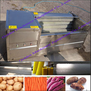 Stainless Steel Brush Model Vegetable Washing Washer and Peeling Machine pictures & photos