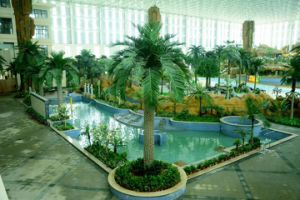 Artificial Coco Palm Tree Outdoor or Indoor Use pictures & photos