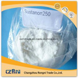 Bodybuilding Supplements Testosterone Sustanon250mg/Ml pictures & photos