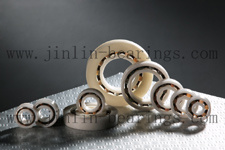 Plastic & Nyllon Deep Groove Bearings pictures & photos
