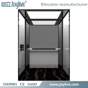 Luxury Small Home Lift Elevator Safe and Steady Speed pictures & photos