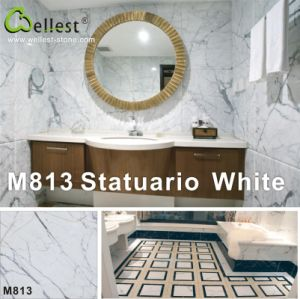 Natural Statuario White White Marble for Flooring/Floor/Wall Decor pictures & photos