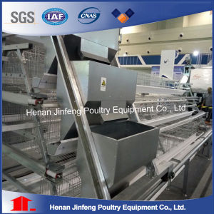 Automatic Layer Farm Equipment Chicken Cage on Sell pictures & photos