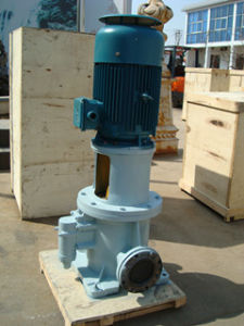 3gls Vertical Three Screw Pump pictures & photos