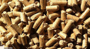 Pine Wood /Forest Scent Bentonite Cat Litter pictures & photos