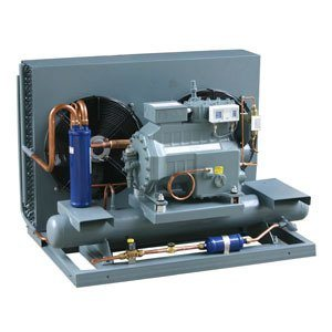 CE Approved Cold Room Condensing Unit pictures & photos
