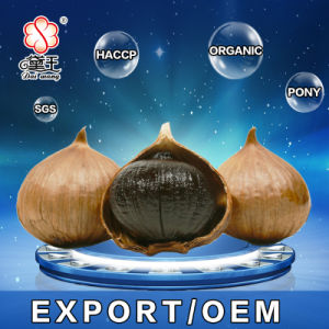 Excellent Quality Chinese Black Garlic 900g/Bag pictures & photos