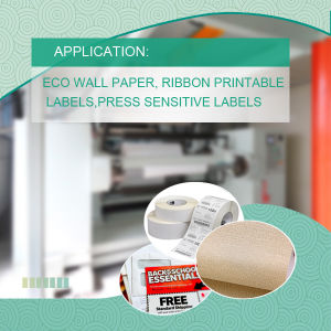 Glossy & Matt Surface Coated Synthetic Paper for Offset Printing with MSDS pictures & photos