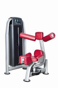 Fitness Equipment Body Building Strength Machine Rotary Torso (UM319) pictures & photos
