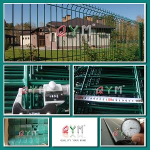 Metal Fence/Wire Fence /Galvanized and PVC Coating pictures & photos