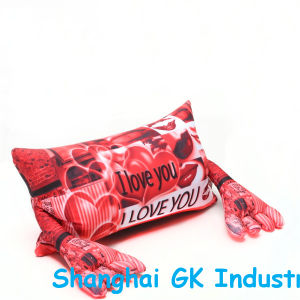 Microbeads Pillow Different Colorfui Microbeads Pillow pictures & photos