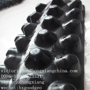 Drainage Board with Geotextile pictures & photos