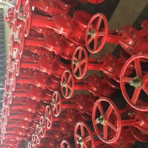 UL/FM 200psi-OS&Y Type Flanged Grooved End Gate Valve pictures & photos