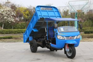 Three Wheel Truck with Rops & Sunshade pictures & photos
