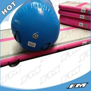 FM PVC Durable Dwf Air Track Mat Inflatable Home Edtion pictures & photos