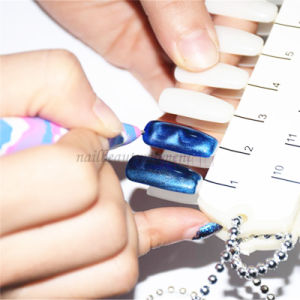 Magic Nail Art Magnetic Gel Pen Manicure Tool (B043)